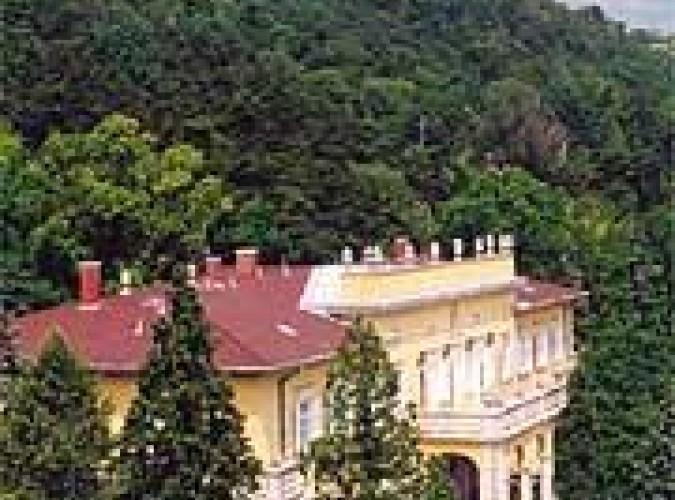 Park Hotel Kastély Tihany Hungría Traveltohungarycom
